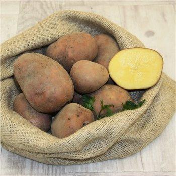 Ziemniak Bellarosa