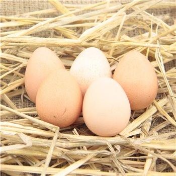Jaja od perliczek